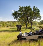 Ulusaba Game Reserve_2
